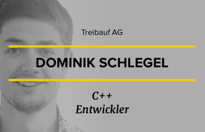 Small interview   dominik schlegel